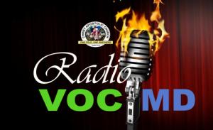 vocmd-radio